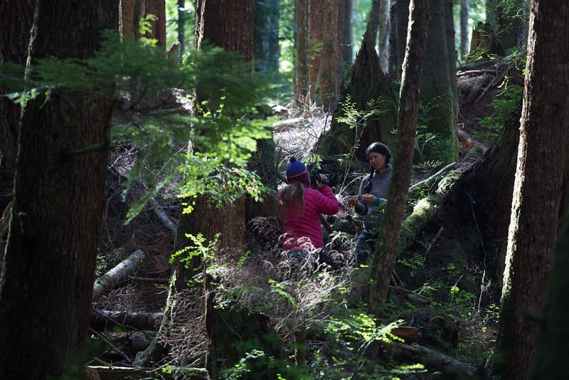 150913_Nikki_Forest_5296.jpg