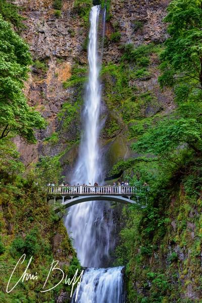 Portland17-1402-CC NX FS.jpg