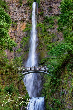 Portland and Multnomah Falls, June 2017