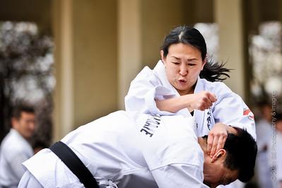 2011 Northern California's Japantown Cherry Blossom Festival