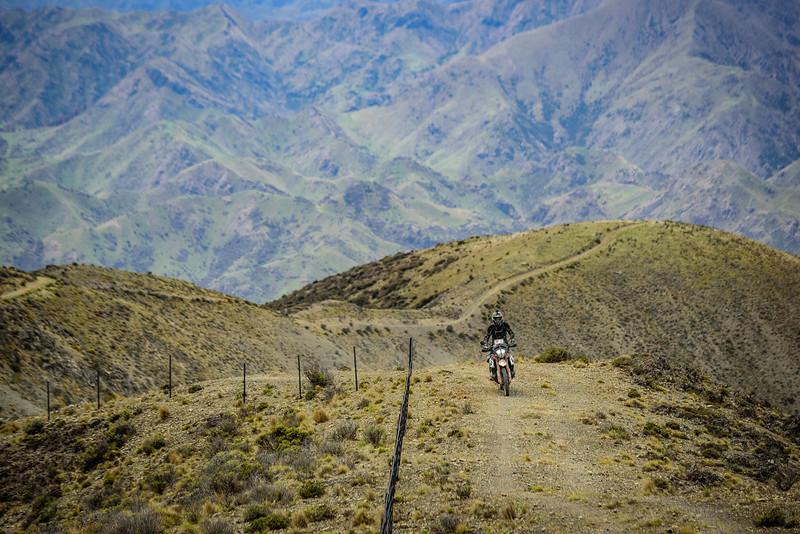 2019 KTM New Zealand Adventure Rallye (1058).jpg