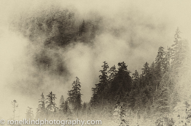 Alaska-0238.jpg