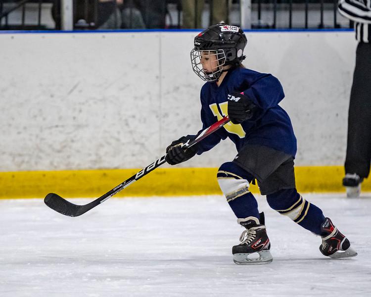 2019-02-04-Ryan-Naughton-Hockey-99.jpg