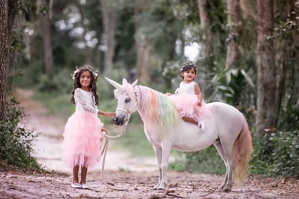 Unicorns June 2019 - Persaud