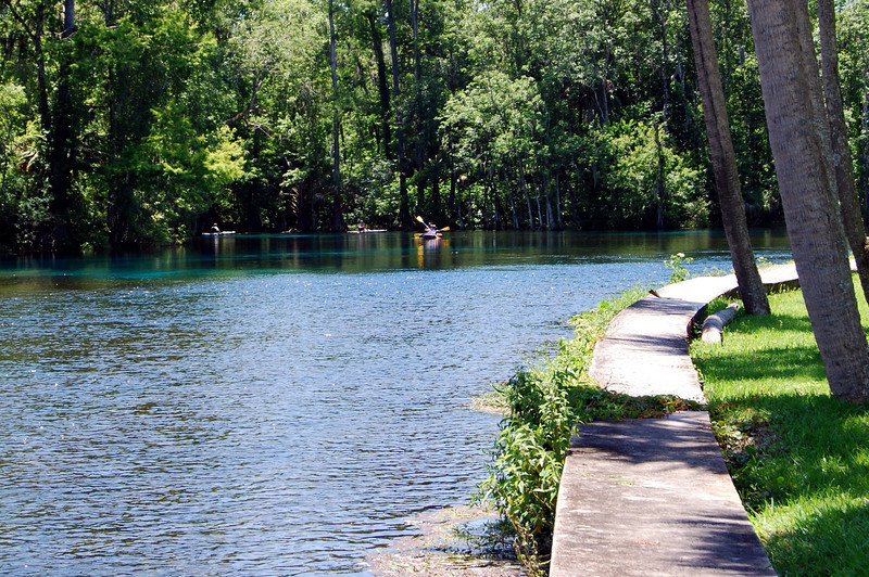 2014 Silver Springs, Florida (16).JPG