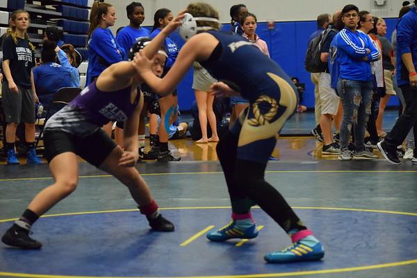 Lady Panther Girls Tournament