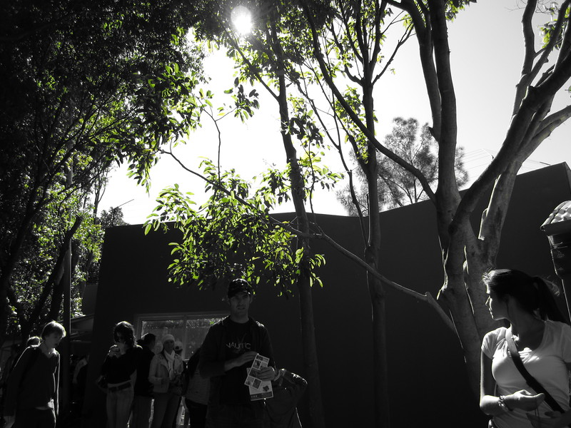 Sydney - Sydeny Zoo-35.JPG