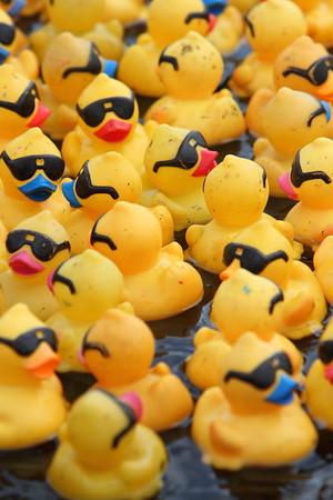 2017 PACE Duck Race