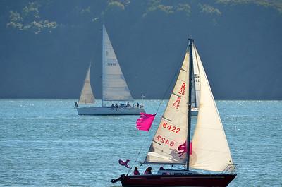 Pink Boat Regatta