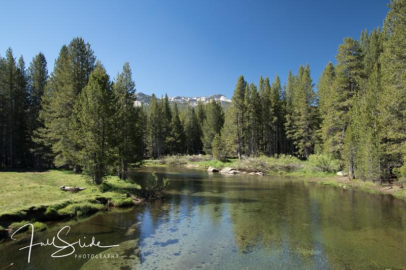 Yosemite 2018 -5.jpg