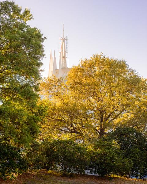Space Mountain Spires - Magic Kingdom Walt Disney World