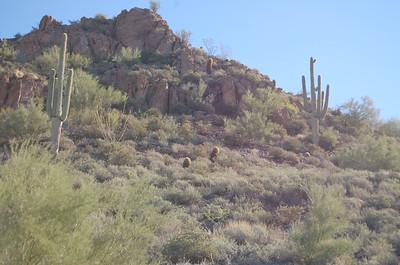 Apache Trail AZ 88