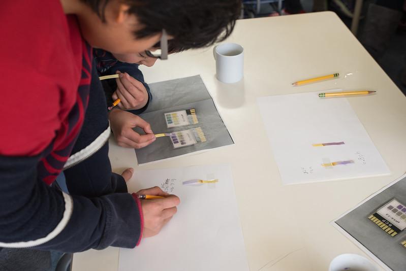 Grade 4 Science Activity-9740.jpg