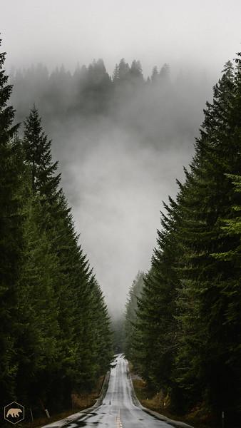Oregon-Road.jpg