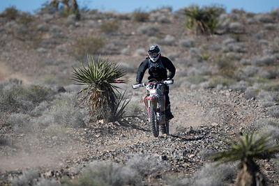 Motorcycle Dual Sport (J)