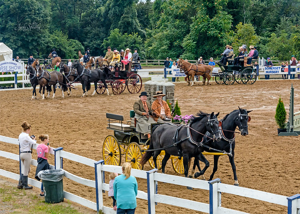 Parade of Carriages