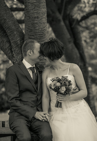 Susan and Stuarts Wedding - 16/08/2014