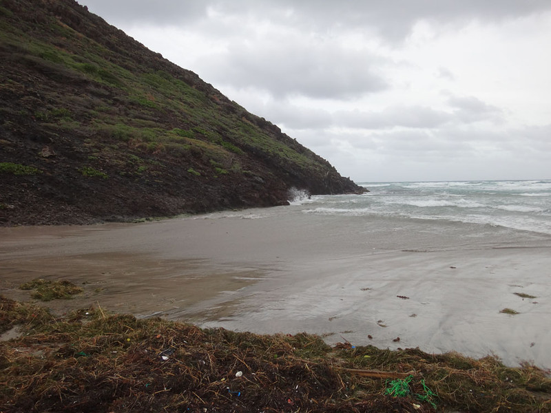 This time I decided to climb the mountain to the North of Sandy Bank beach, after my legs had been shredded by the unfriendly foliage of the southern mountain last time