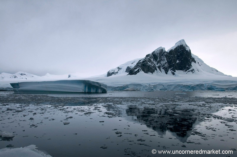 Late Afternoon Reflections in Antarctica