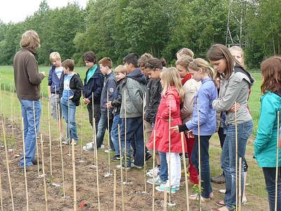 6de leerjaar - Lichtaart boomplantage
