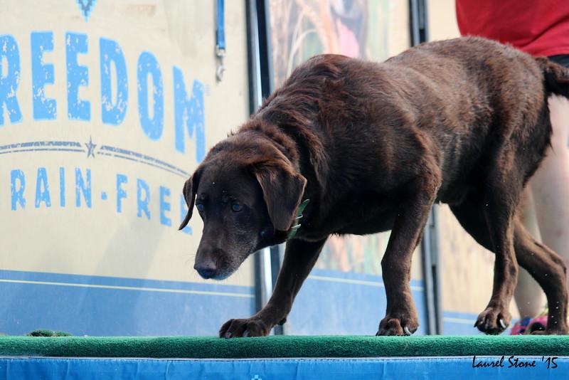 2015.8.21 Dock Dogs Lambeau-052.JPG