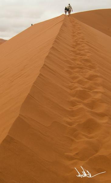 Climbing Dune 45-1.jpg