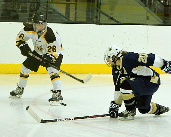 11-17 UWS Women's Hockey vs Eau Claire