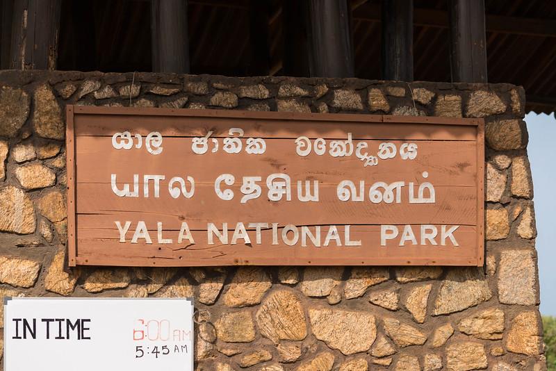 sri-lanka-wildlife-4.jpg