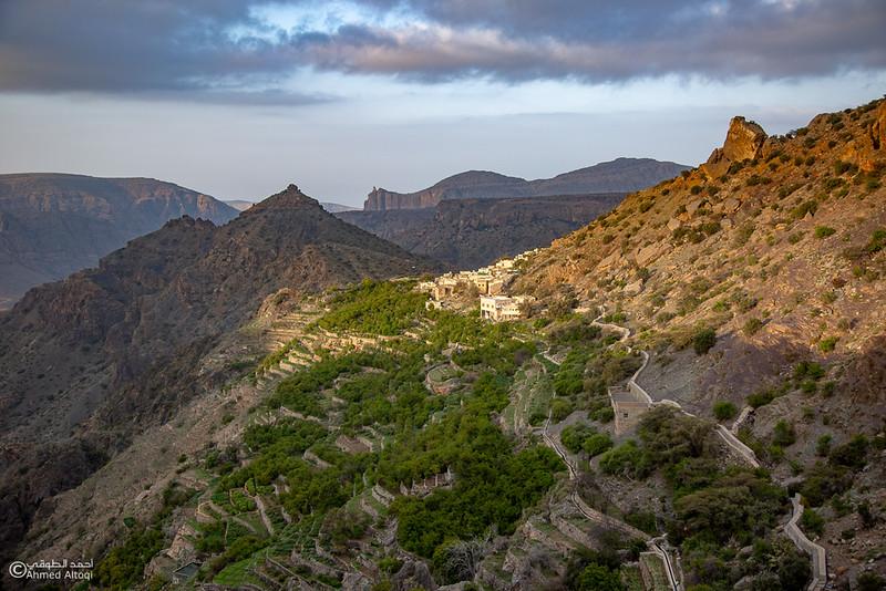 FE2A6366 (1)-Al Jabal Alakhdar-Aljabal Alakhdhar-Oman.jpg