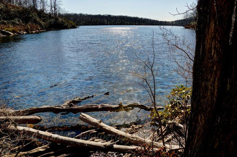 Sunfish Pond HDR 2.jpg