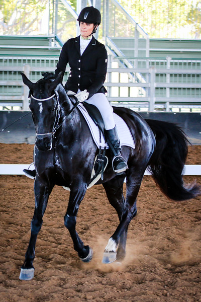 Bundaberg Country Dressage July 2016