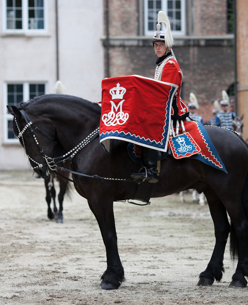 Denmark 2011 Garde Husar Regimentet