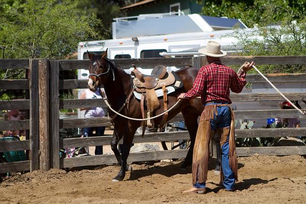 Buck in Riverside, Ca. April 2011