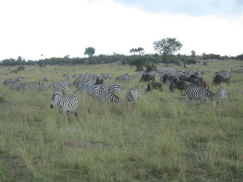 Tanzania14-3670.jpg
