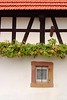 Grapes on a half-timbered house in Hunspach, France. © 2004 Kenneth R. Sheide