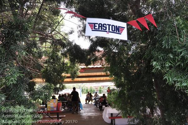 Easton's 1st Birthday