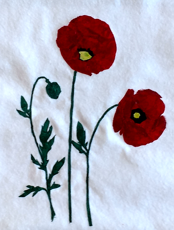 poppies_20180729_.png