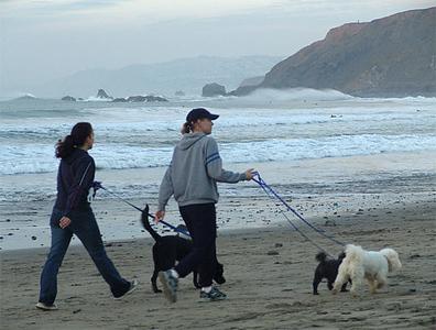 Pacifica State Beach (Linda Mar Beach)