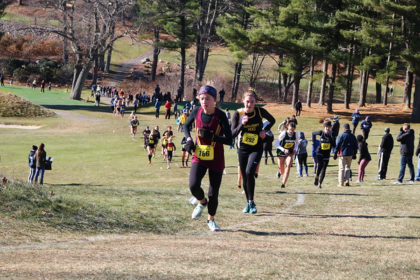 MIAA State Cross-Country Championships - 111619