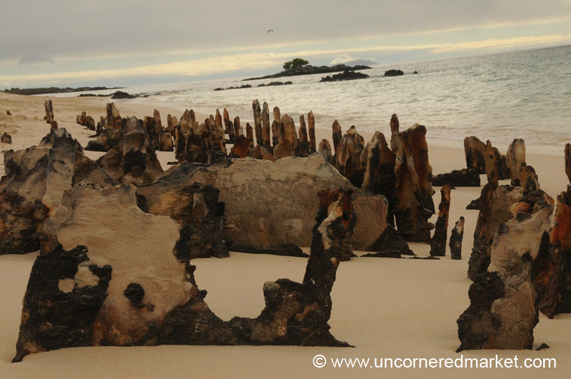 Wrecked American Barge on Las Bachas Beach - Galapagos Islands