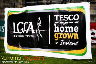 Ladies Dublin County Football Final 2013