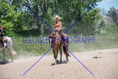CSHA Western 160605
