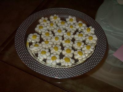 03-03 - Meringue Daisies - Smyrna, GA