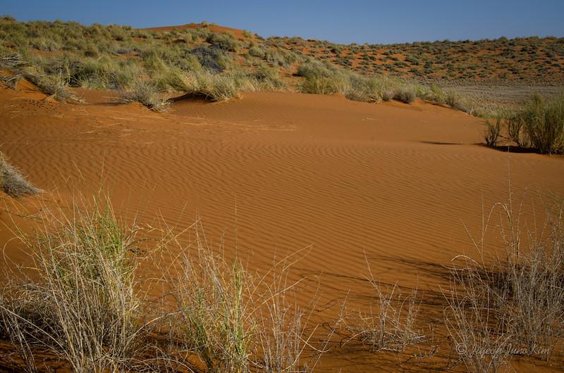 Namibia-4199.jpg