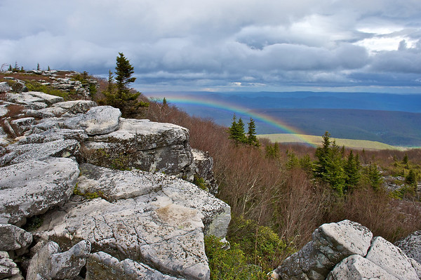 Canaan Valley National Wildlife Refuge, Dolly Sods Wilderness, Blackwater Falls, and Monongahela National Forest