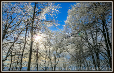 South Carolina Snow Days 2016