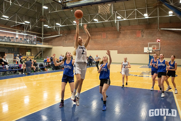 Varsity Girls' Basketball vs. Telstar