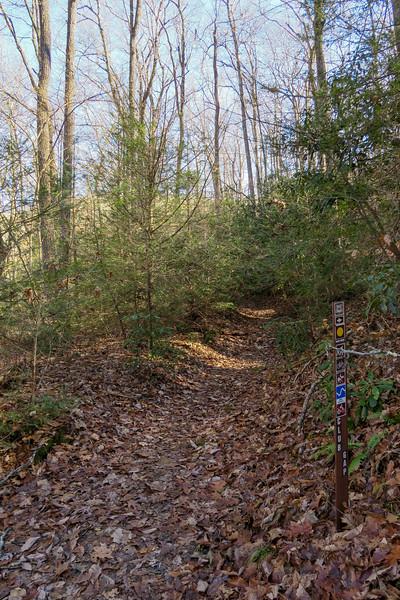 Club Gap Trail -- 3,400'