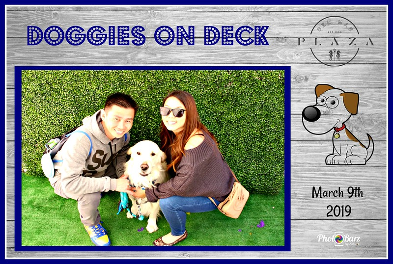Doggys on Deck12.jpg