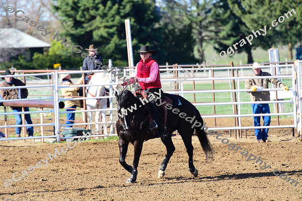 Shoshone - April 15